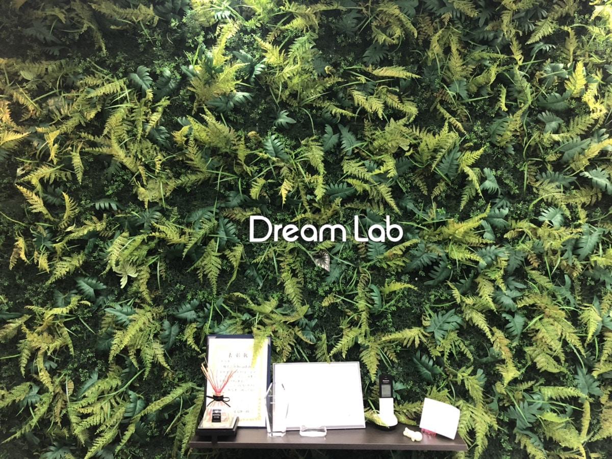 DreamLabについて